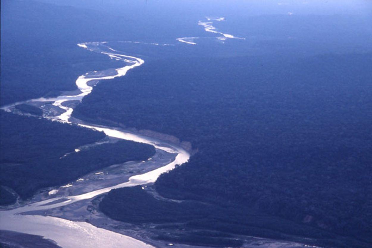 Afbeelding van Aan ontbossing Amazone komt geen einde