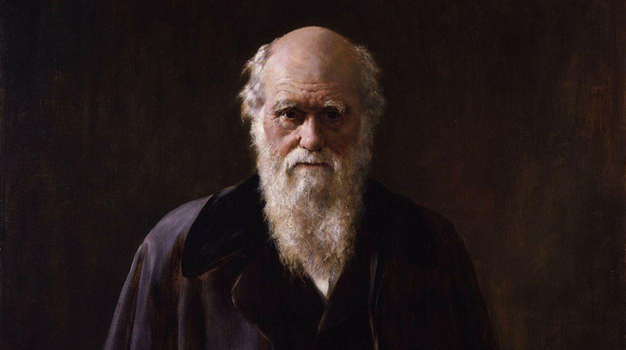 Afbeelding van Darwin in zakformaat