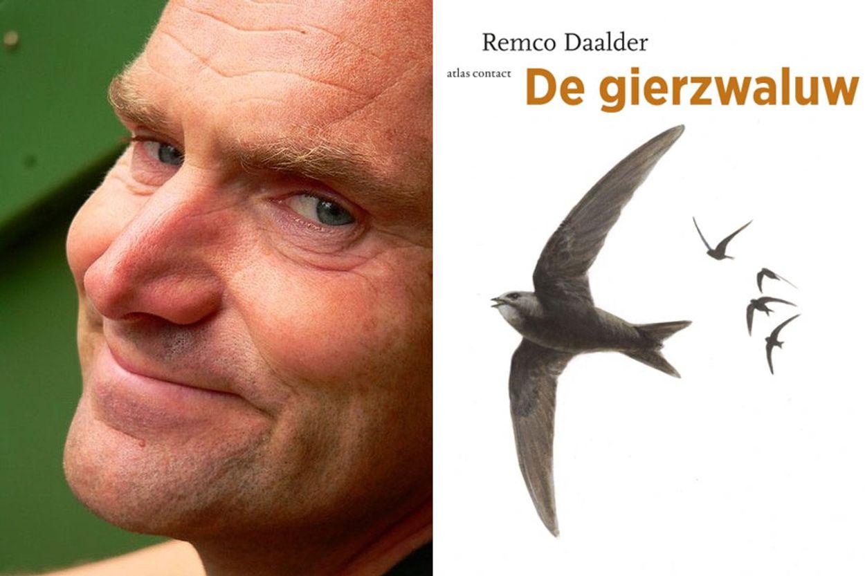 Afbeelding van Winnaar: De gierzwaluw van Remco Daalder