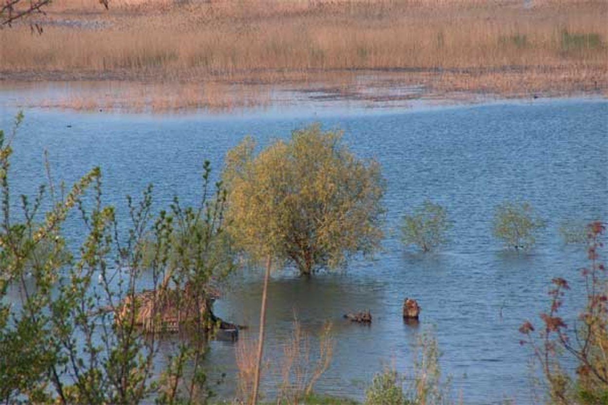 Afbeelding van WNF opent centrum voor klimaataanpassing India