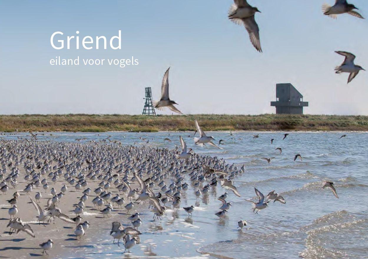 Afbeelding van Win het boek 'Griend, eiland voor vogels'