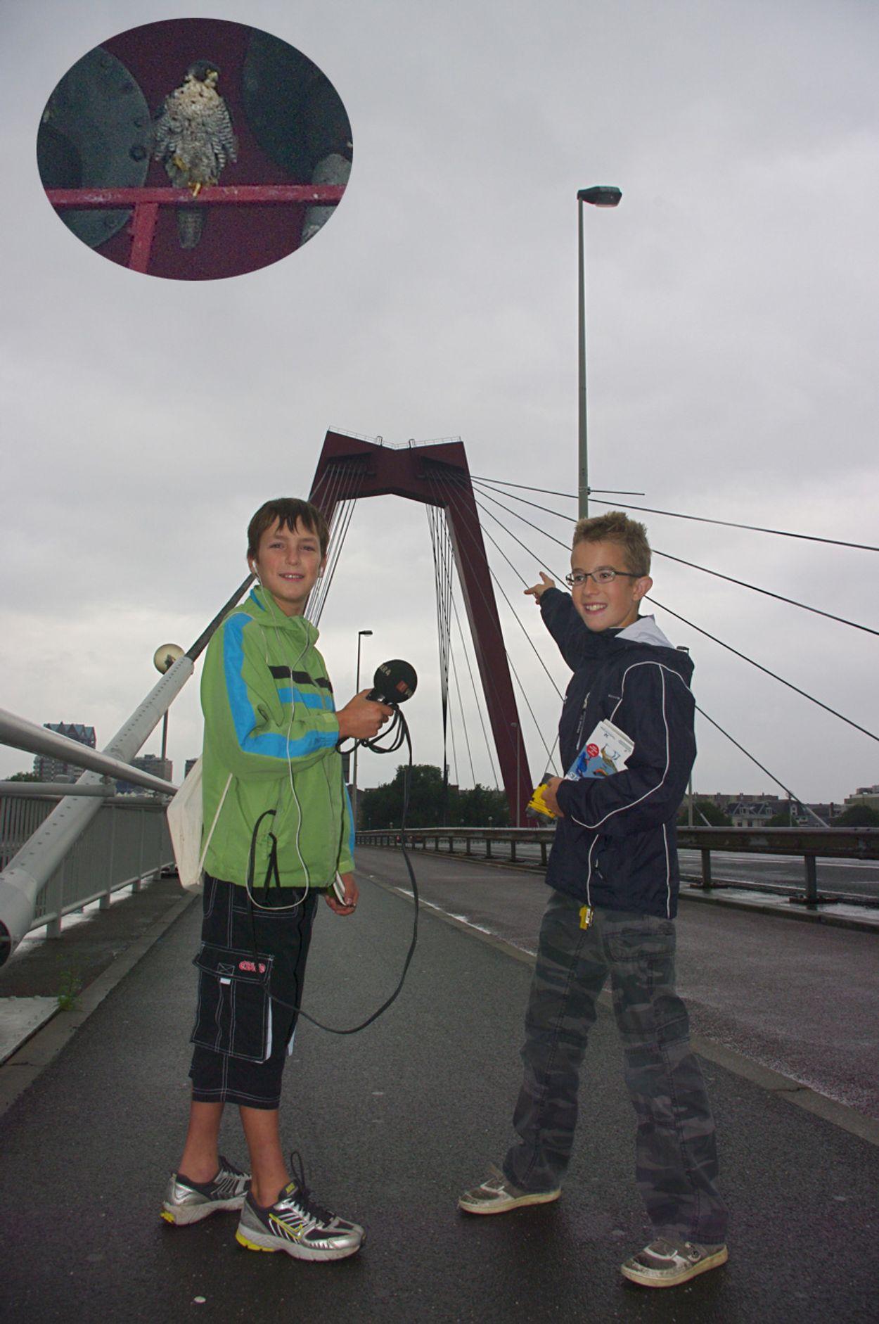 Afbeelding van Rotterdams jongste stadsbioloog_19_08_2010