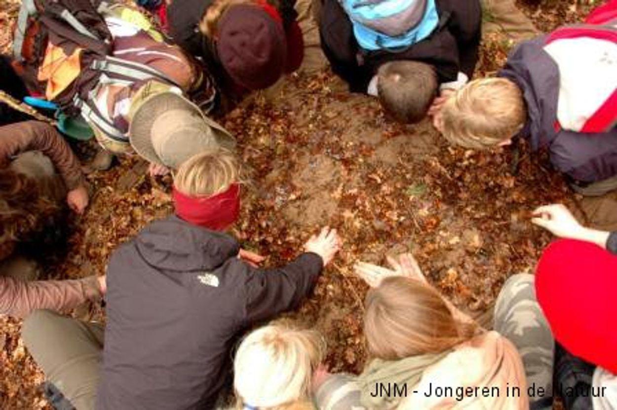 Afbeelding van Jonge natuurliefhebbers