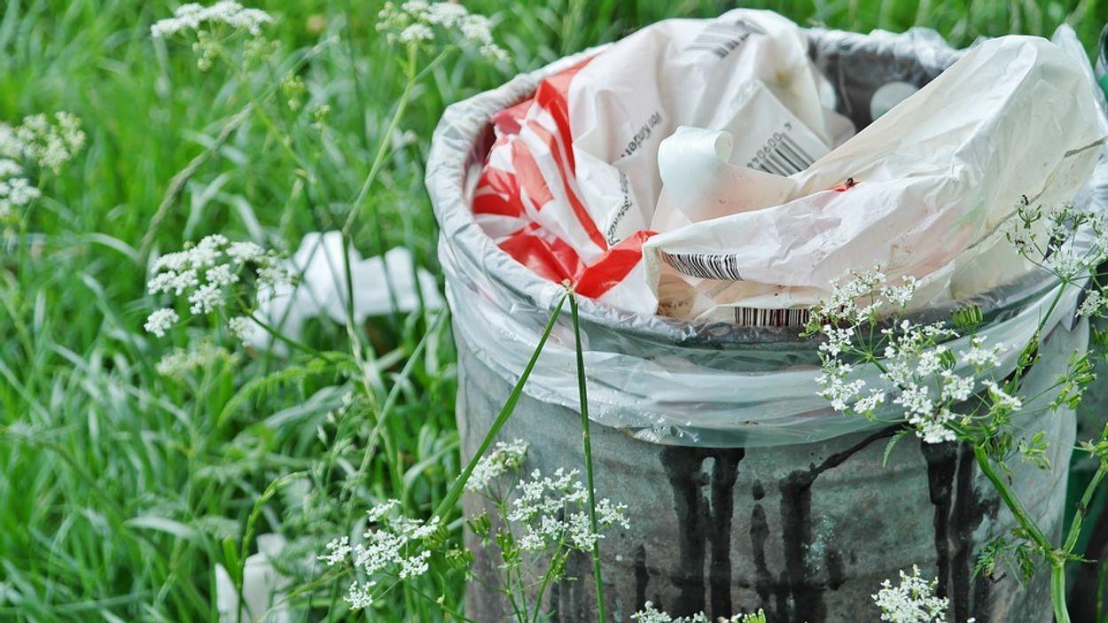 Afbeelding van Ruim 5 miljard ton plastic verdwenen in het milieu