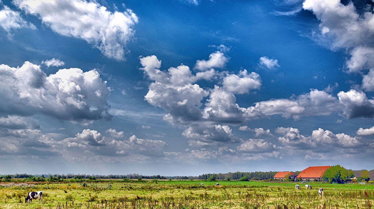 Afbeelding van Akkoord schonere lucht laat Nederlanders langer leven