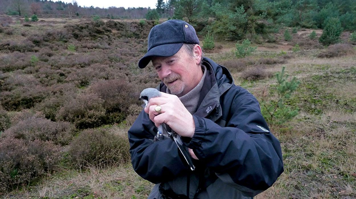 Afbeelding van Allereerste Jan Wolkers Oeuvreprijs voor Koos van Zomeren