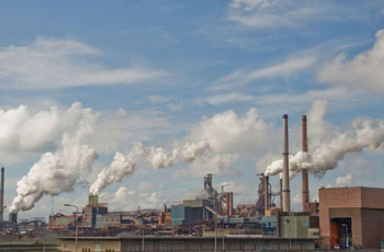 Afbeelding van Greenpeace stort steenkool voor hoofdkantoor Nuon