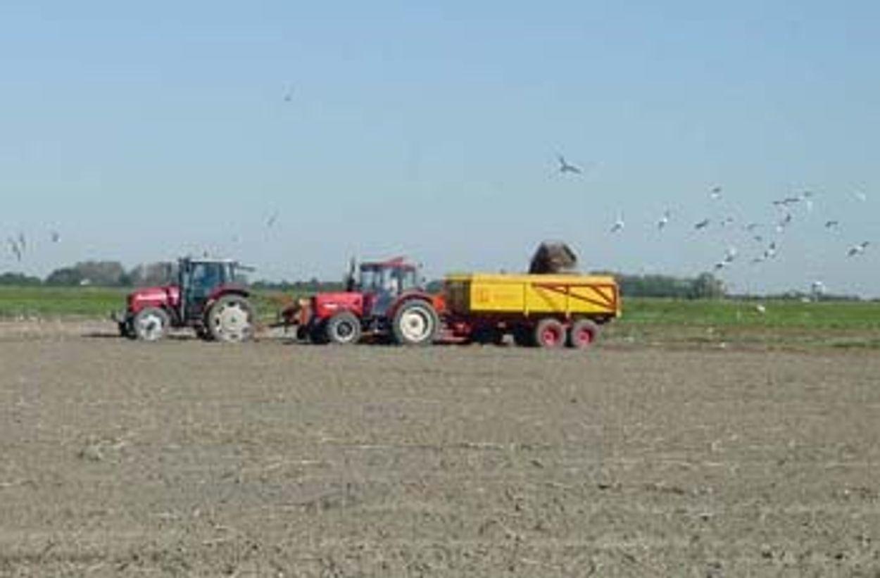 Afbeelding van 'Het landbouwbeleid moet op de schop'