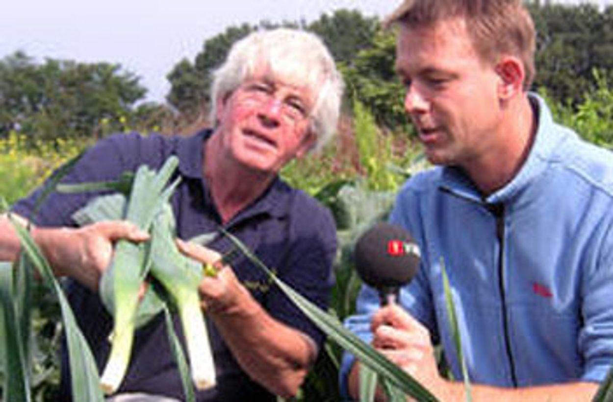 Afbeelding van Lekkerste Groente van Nederland