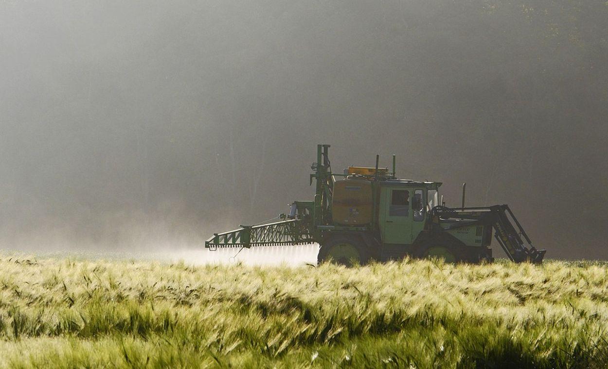 Afbeelding van VN: gebruik pesticiden schending mensenrecht op gezondheid