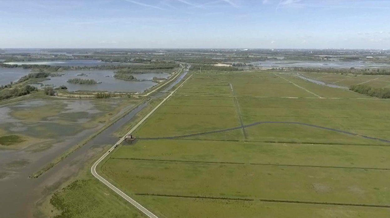 Afbeelding van Noordwaard: Een bijzonder stuk Biesbosch