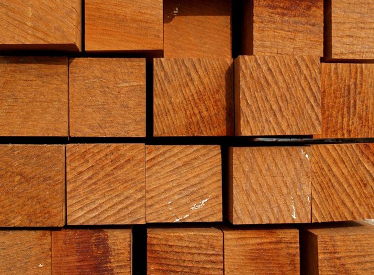 Afbeelding van Keurmerk Maleisisch hardhout nog niet hard genoeg