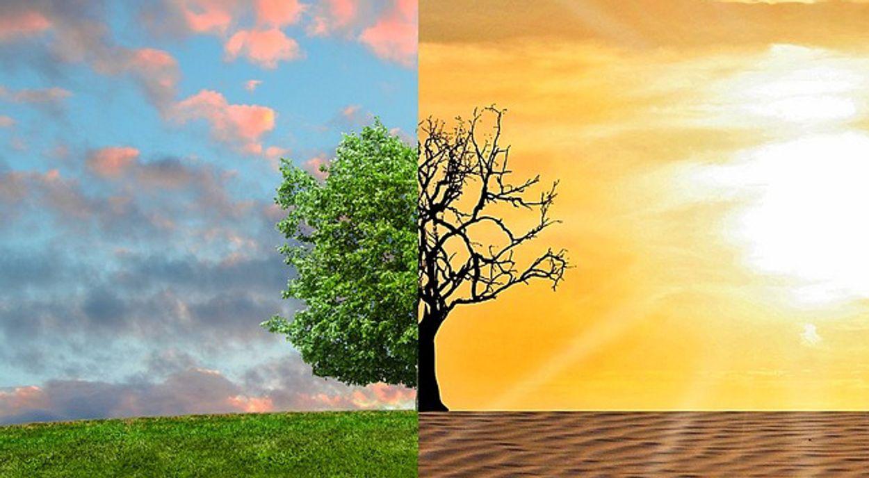Afbeelding van Het nut van een klimaatzaak