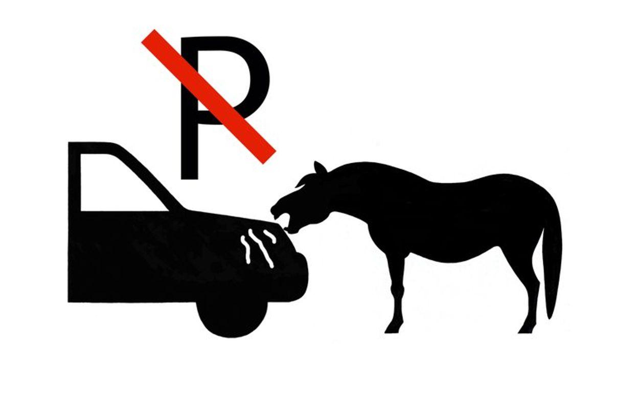 Afbeelding van Vermijd schade aan autolak door schrapende paarden