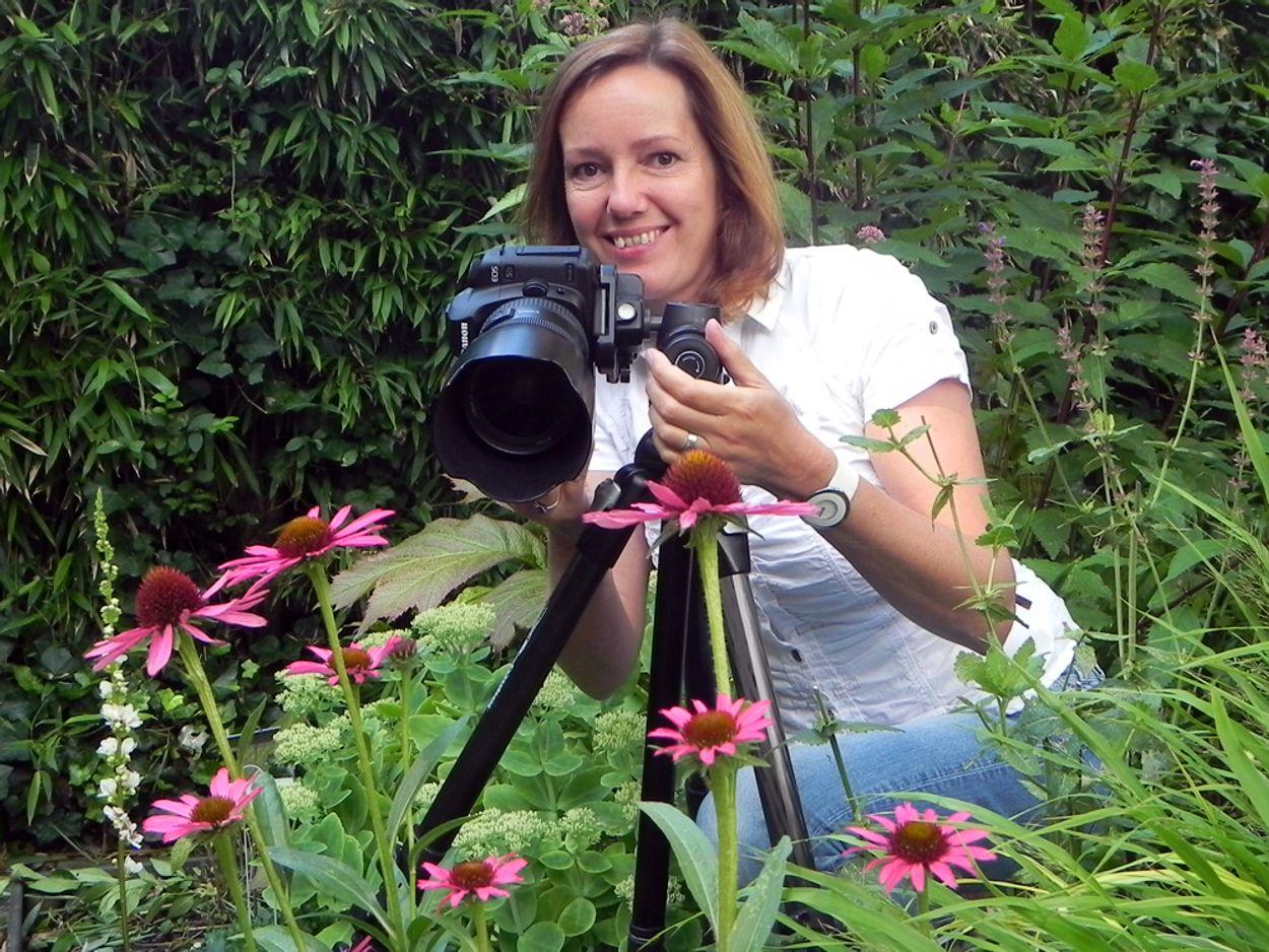 Afbeelding van Tuinreservaten: fotografeer je tuin