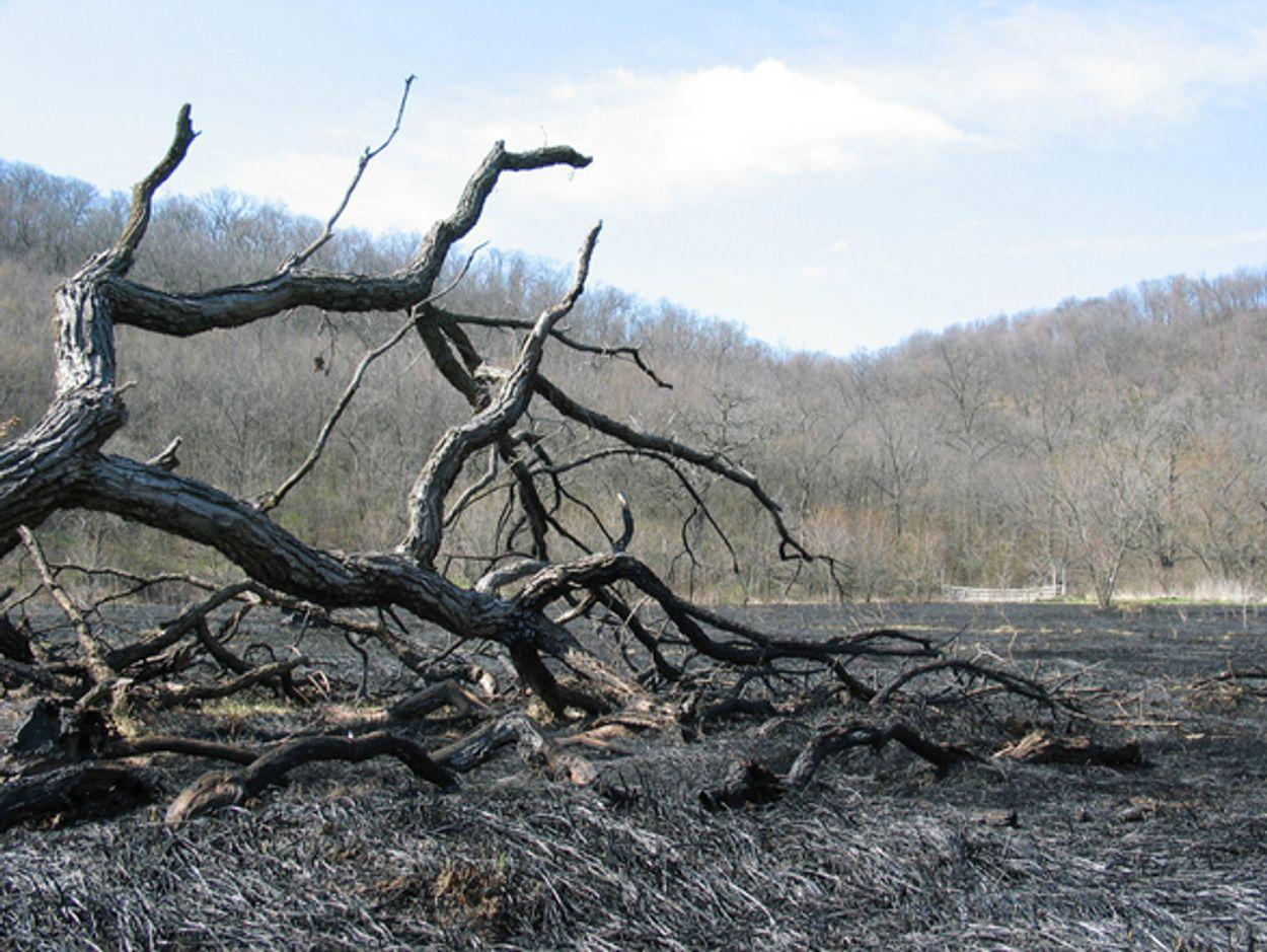 Afbeelding van Noodweer blust brand Athene