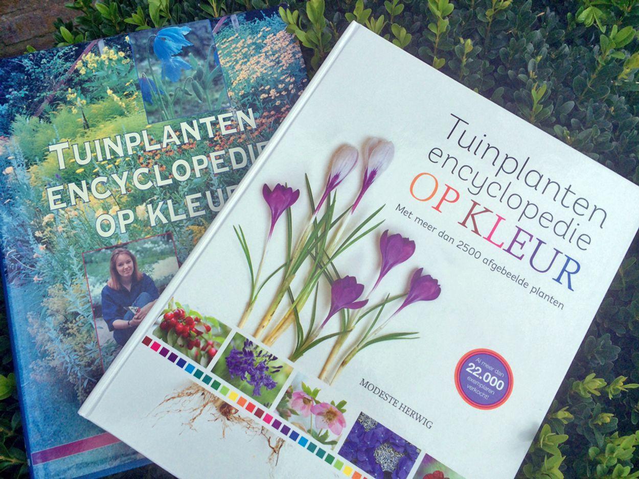 Afbeelding van Tuinieren met een boek