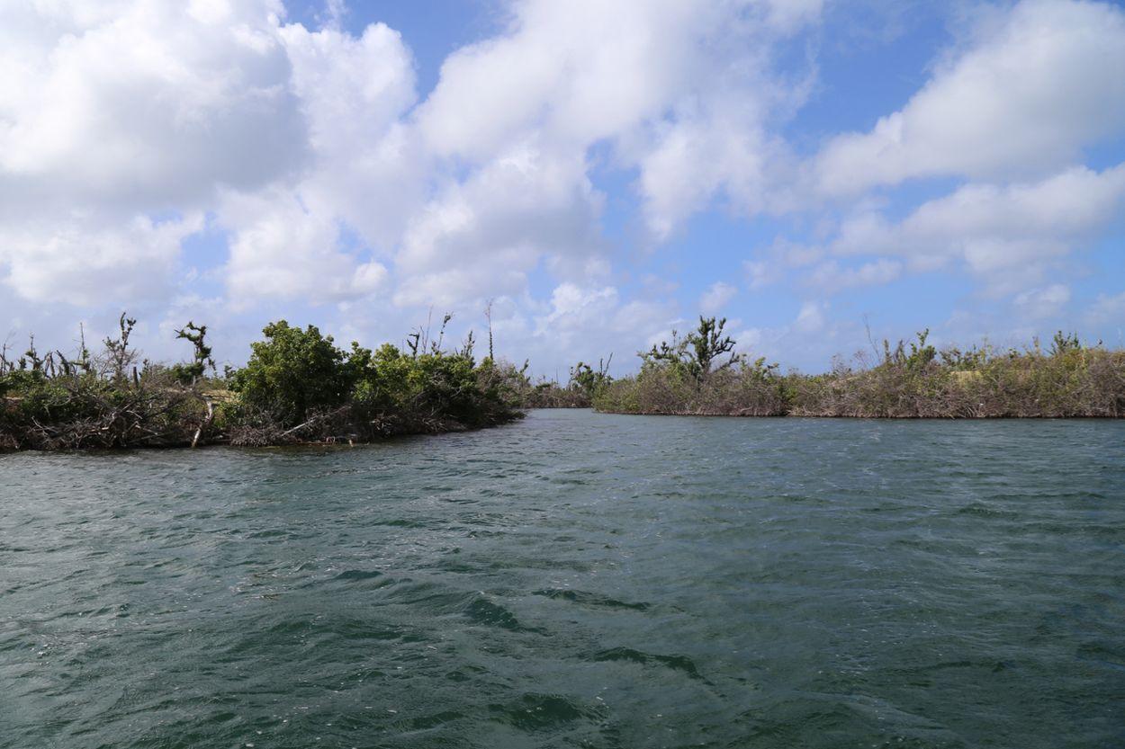 Afbeelding van Sint Maarten een half jaar na Irma