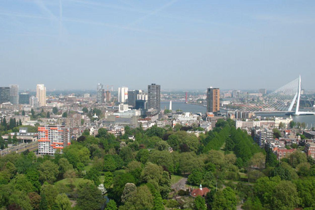 Afbeelding van Subsidie Rotterdamse groene daken