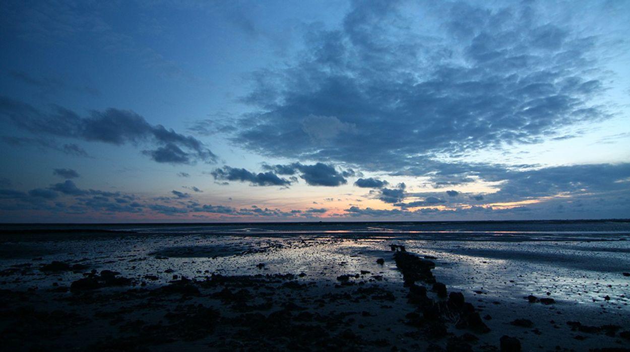 Afbeelding van Duizenden liters olie drijven richting de Waddenzee