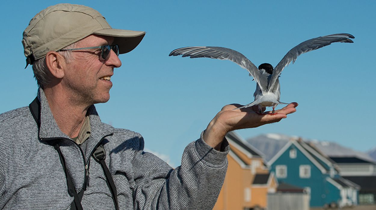 Afbeelding van Het dwarse vogelboek van Siegfried Woldhek