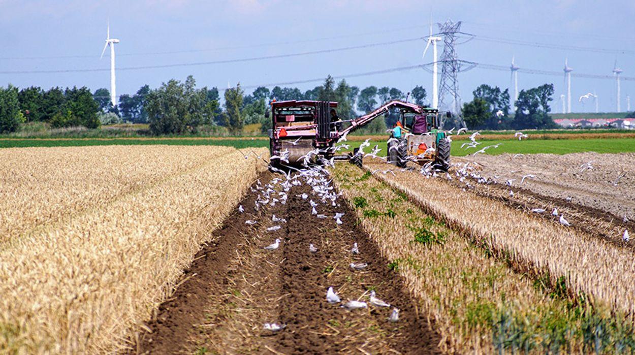 Afbeelding van Betaal eerlijke prijs voor beter boeren