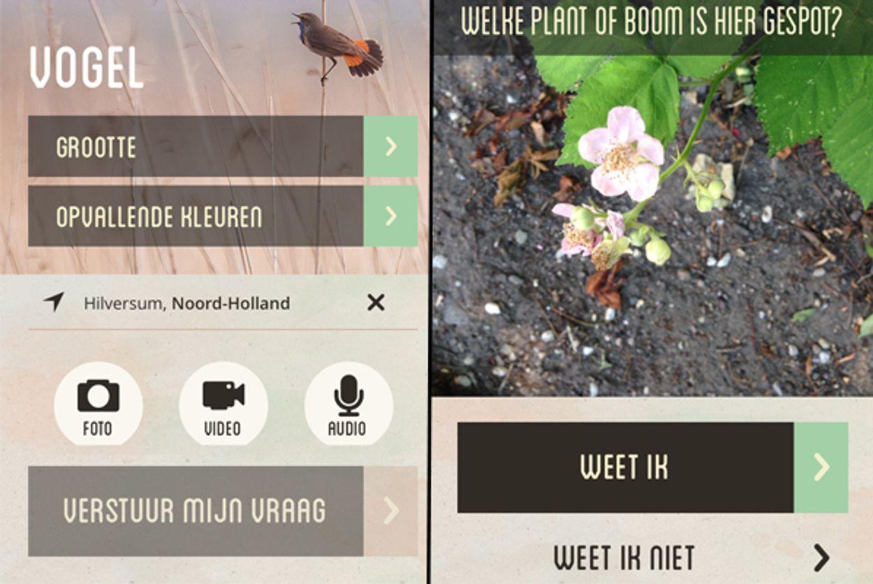 Afbeelding van Vroege Vogels app wint red dot design award