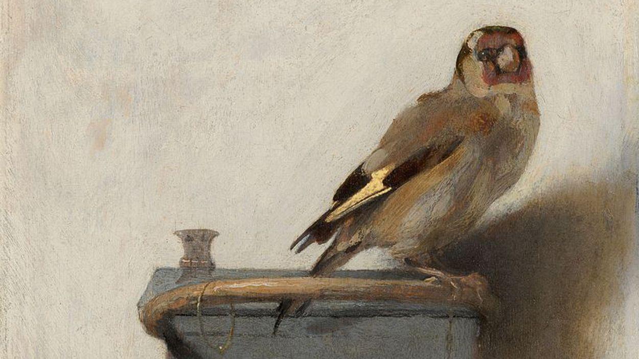 Afbeelding van Puttertje in het Mauritshuis