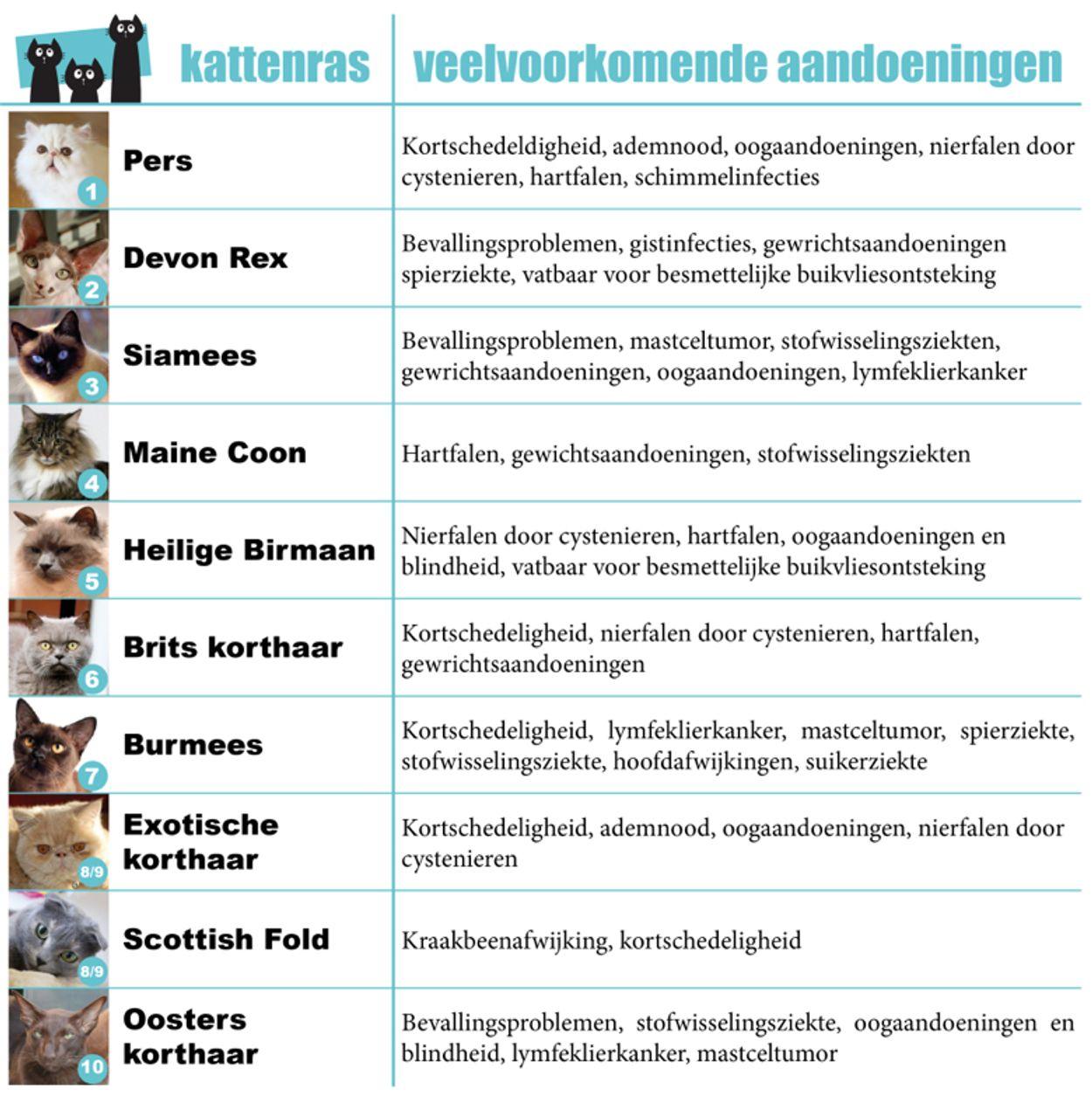 Top10_raskatten