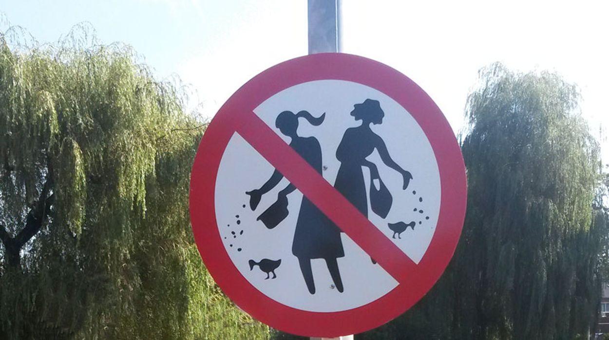 Afbeelding van Verkeersborden tegen voeren eenden