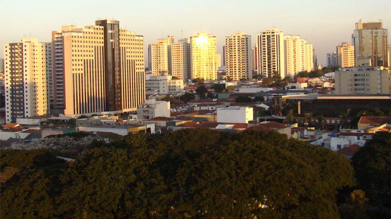 Afbeelding van Natuurbescherming in de stad