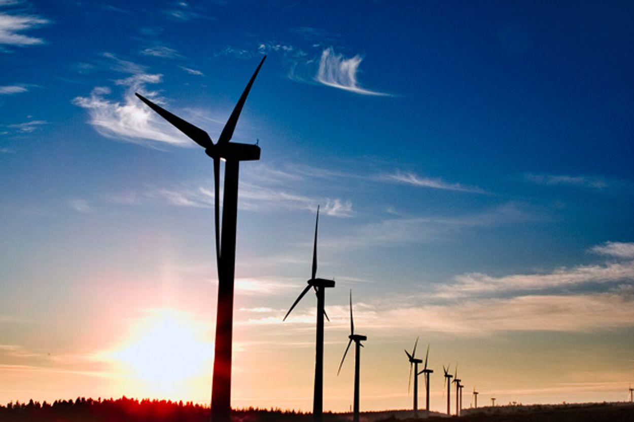 Afbeelding van Windpark Borssele valt flink goedkoper uit