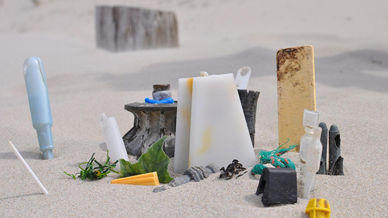 Afbeelding van Unidentified Beach Objects (UBO)
