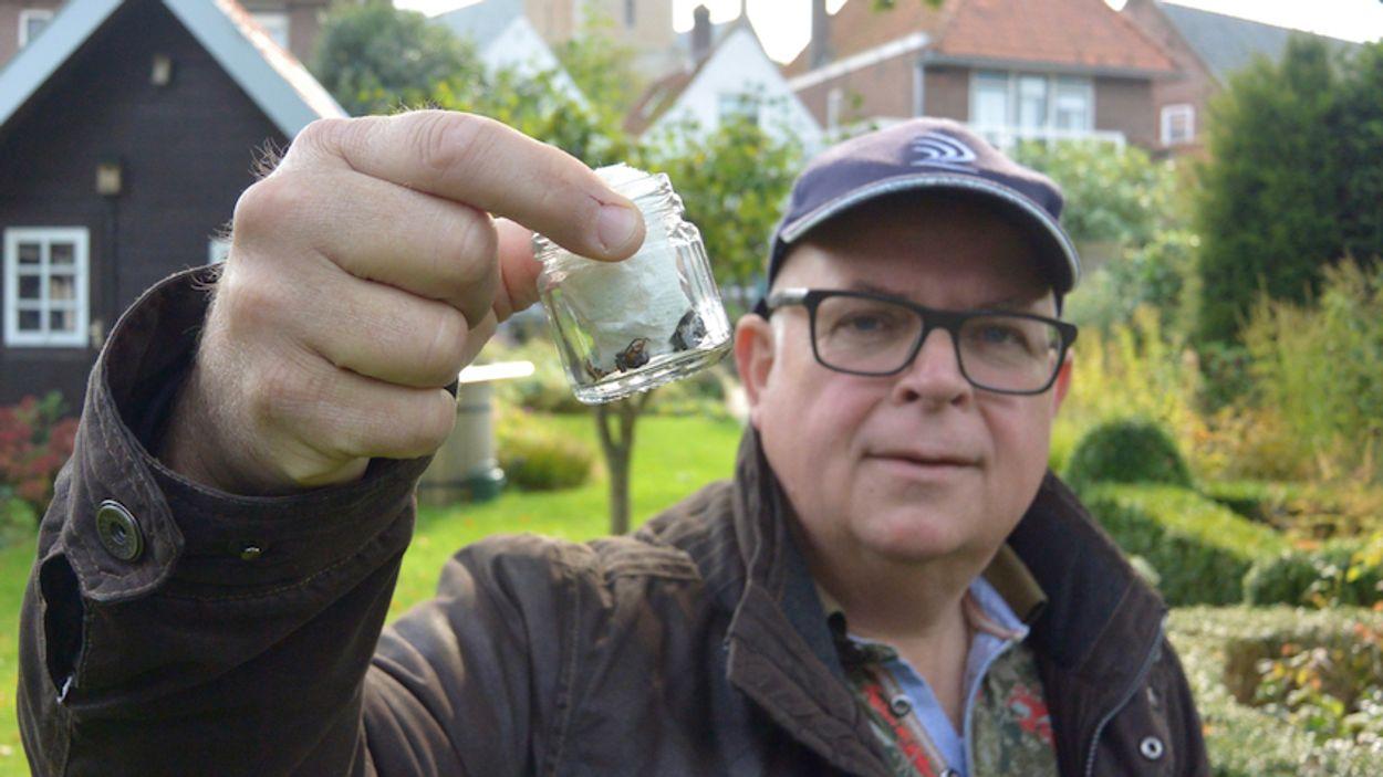 Ron van de Roer met allereerste Aziatische hoornaar voor Nederland