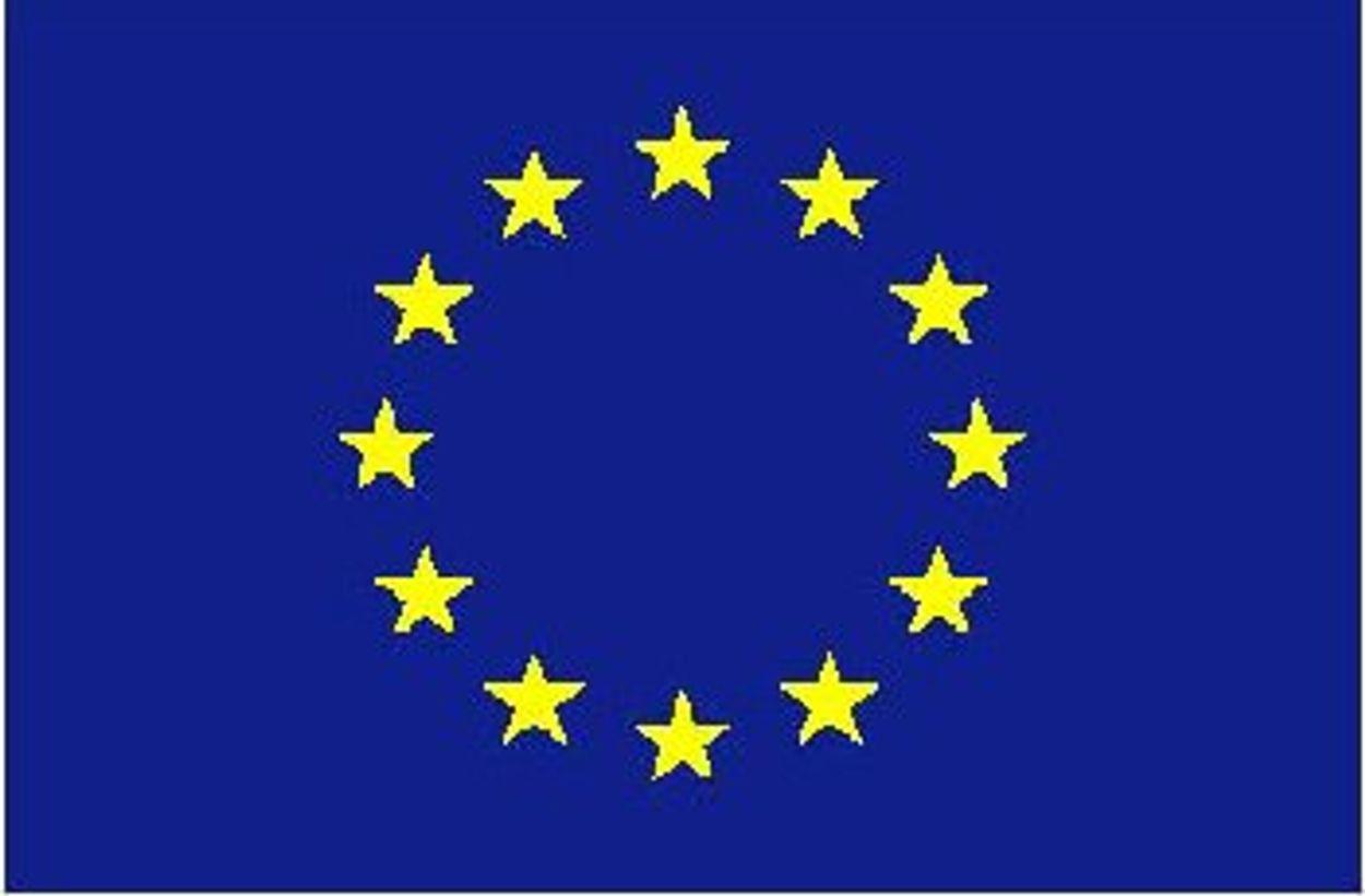 Afbeelding van EU-leiders akkoord met impuls energieprojecten