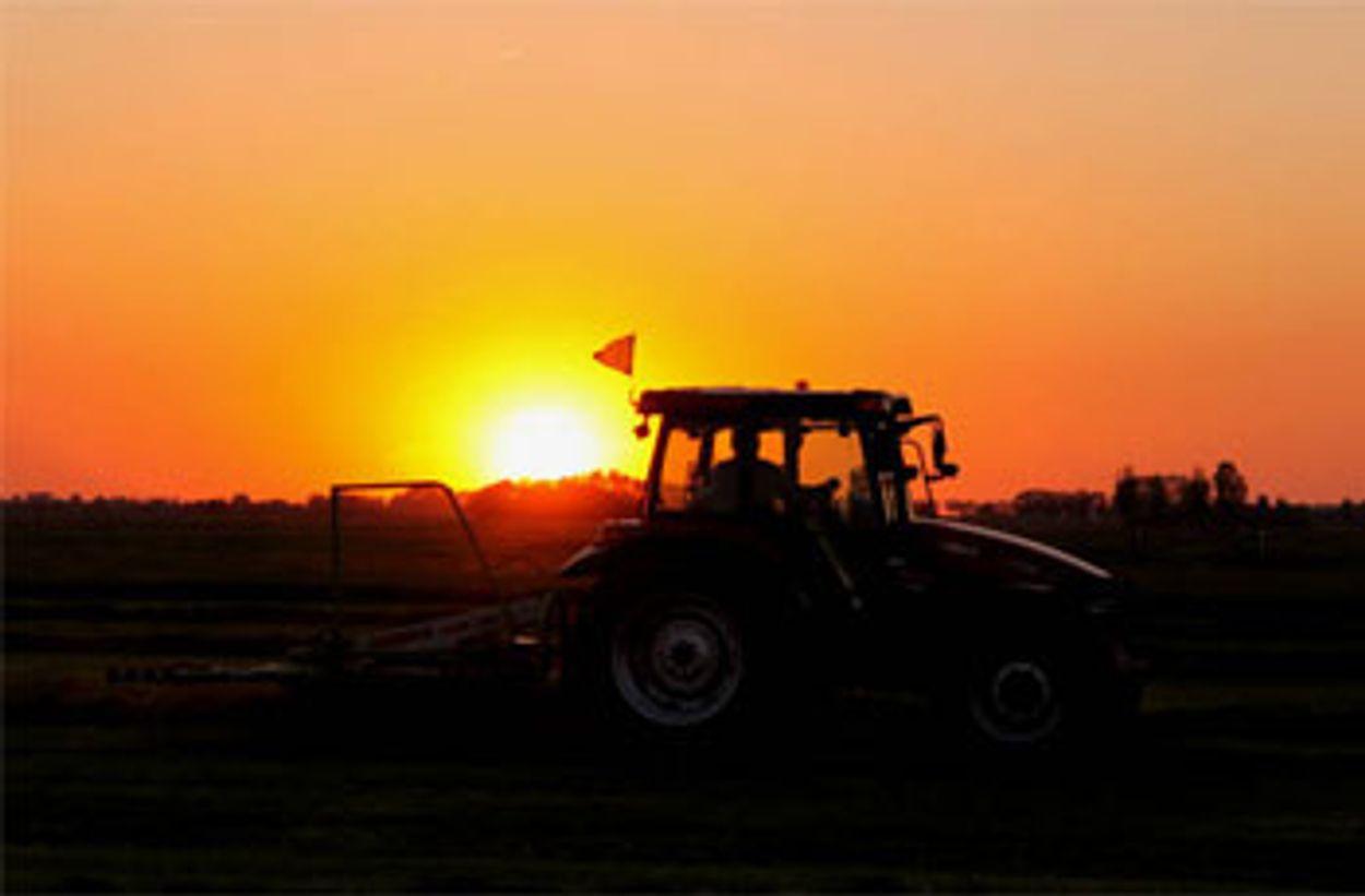 Afbeelding van Schimmel kan landbouwgif vervangen