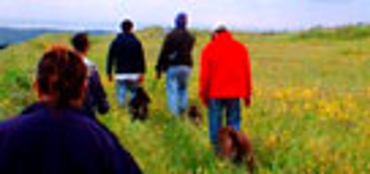 Afbeelding van Natuurorganisaties willen geocaching inperken