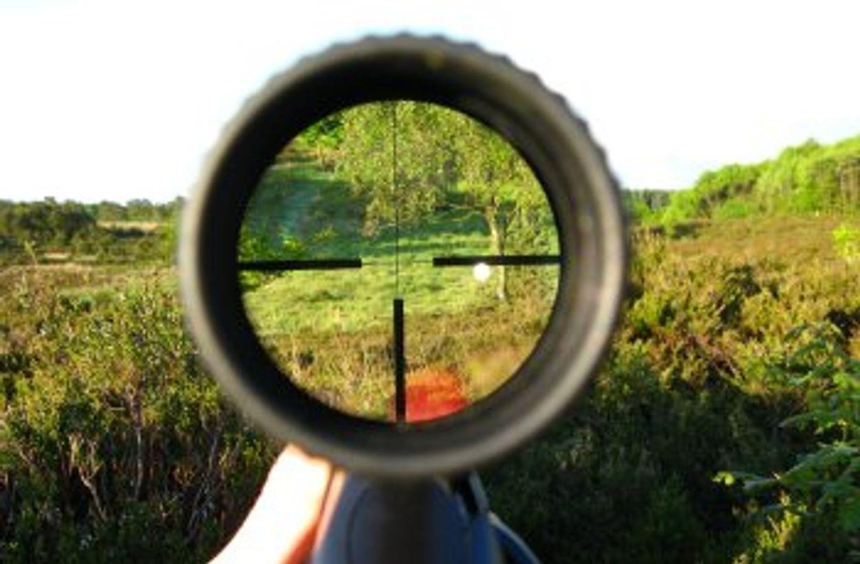 Afbeelding van Jagers opgepakt na verboden jachtpraktijken