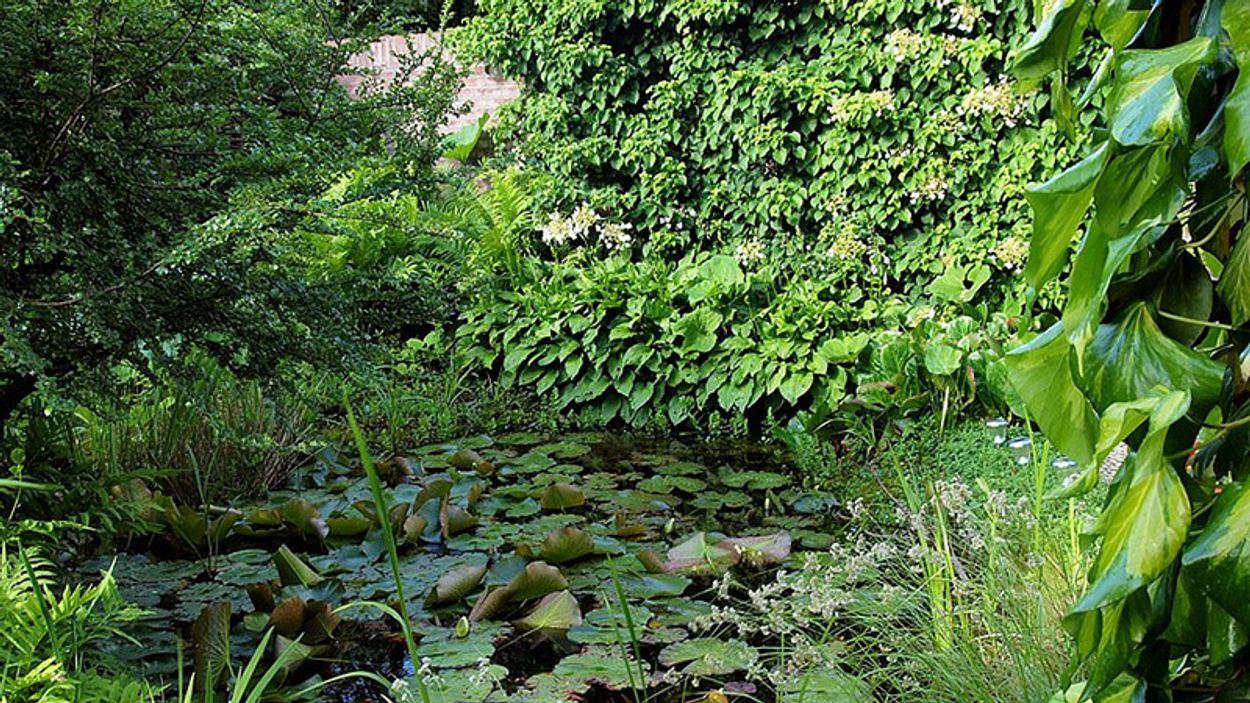 Afbeelding van Tuinreservaten