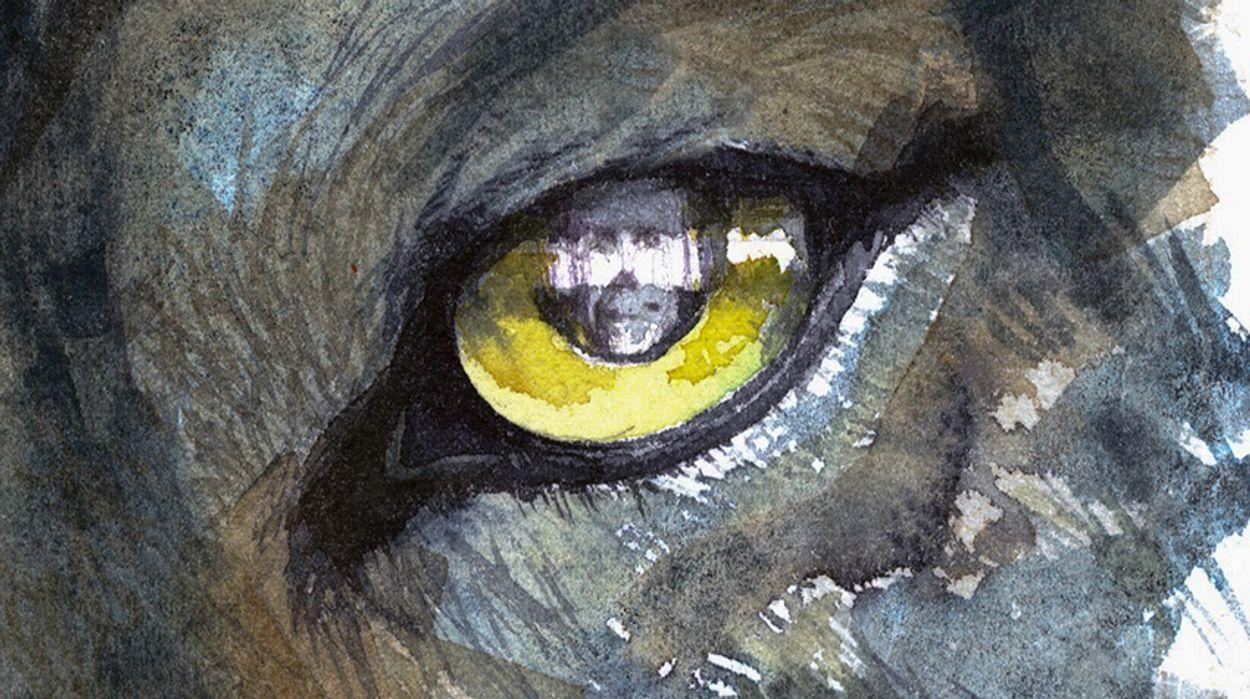 Afbeelding van Huilende Hollandse wolven