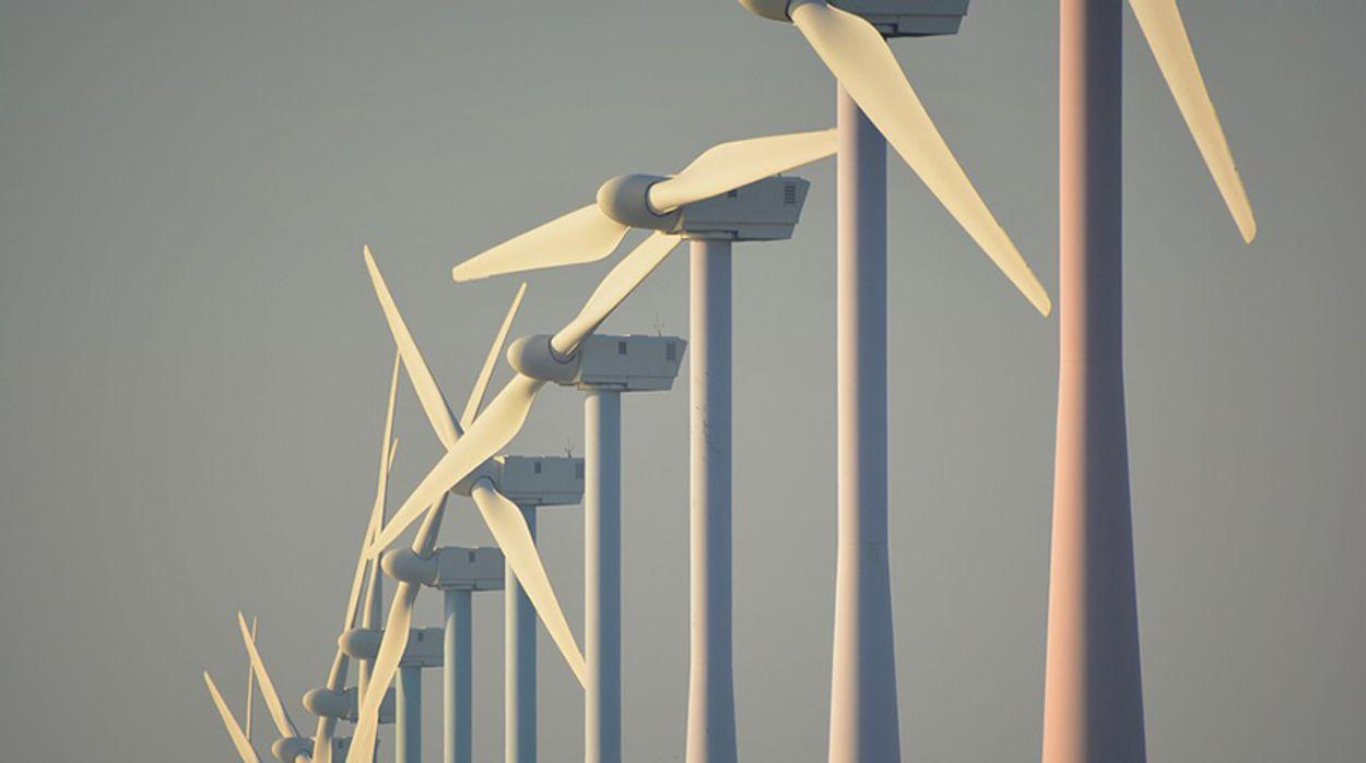 Afbeelding van Klimaat en milieu belangrijke EU-thema's