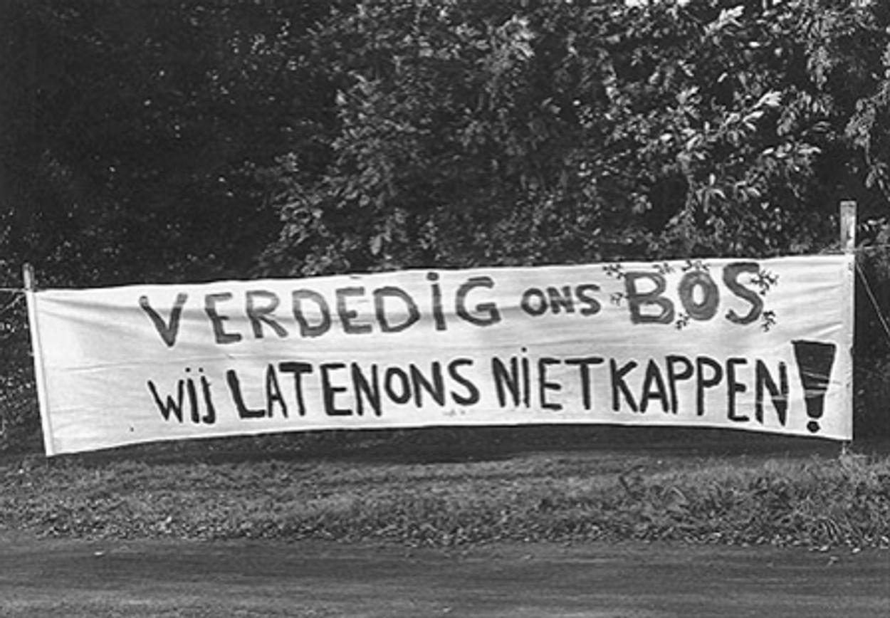 Afbeelding van 'Kaalslag verbreding Ring Utrecht is niet te compenseren'