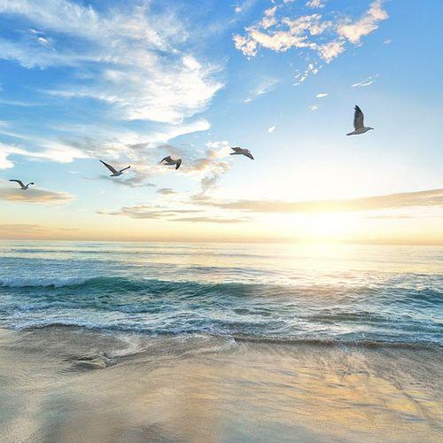 Afbeelding van Vroege Vogels Vakantiequiz: winnaar en goede antwoorden