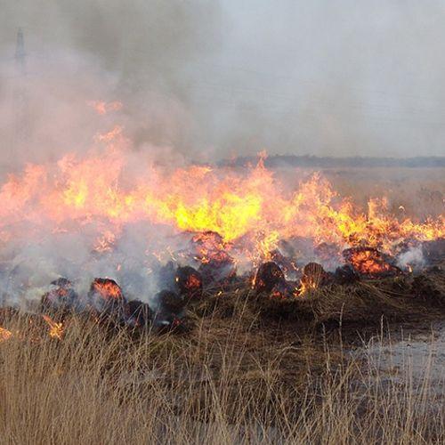 Afbeelding van Brandweer hebben de handen vol aan natuurbranden
