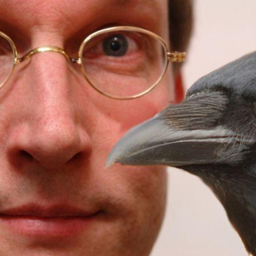 Afbeelding van Kees Moeliker: Kijk naar vogels!