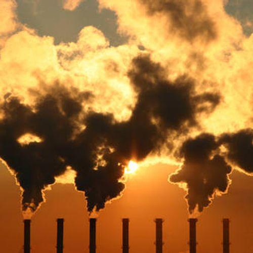 Afbeelding van Eerste Kamer wil af van subsidies voor biomassa