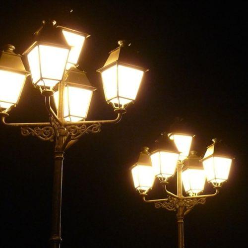 Afbeelding van Nachtelijk licht verandert vogelgedrag