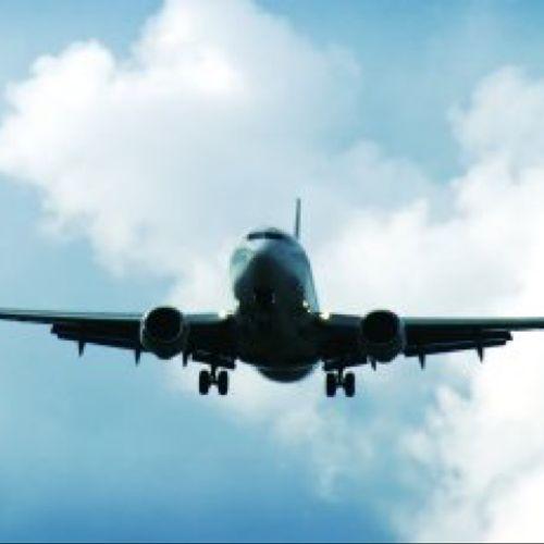 Afbeelding van Vogelbescherming houdt Lelystad Airport in de gaten