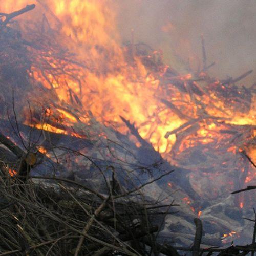 Afbeelding van Te droog voor paasvuren, kans op natuurbranden