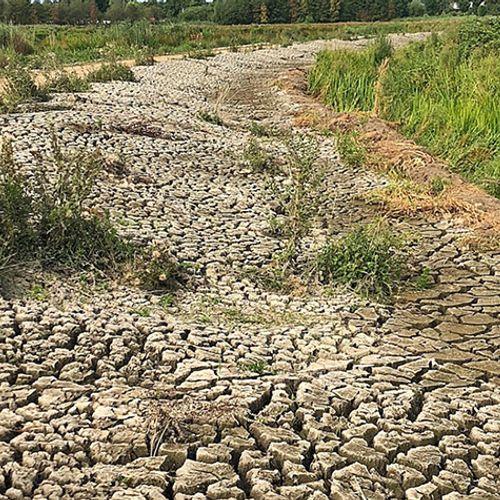 Afbeelding van Dijken en natuur gaan voor drinkwater